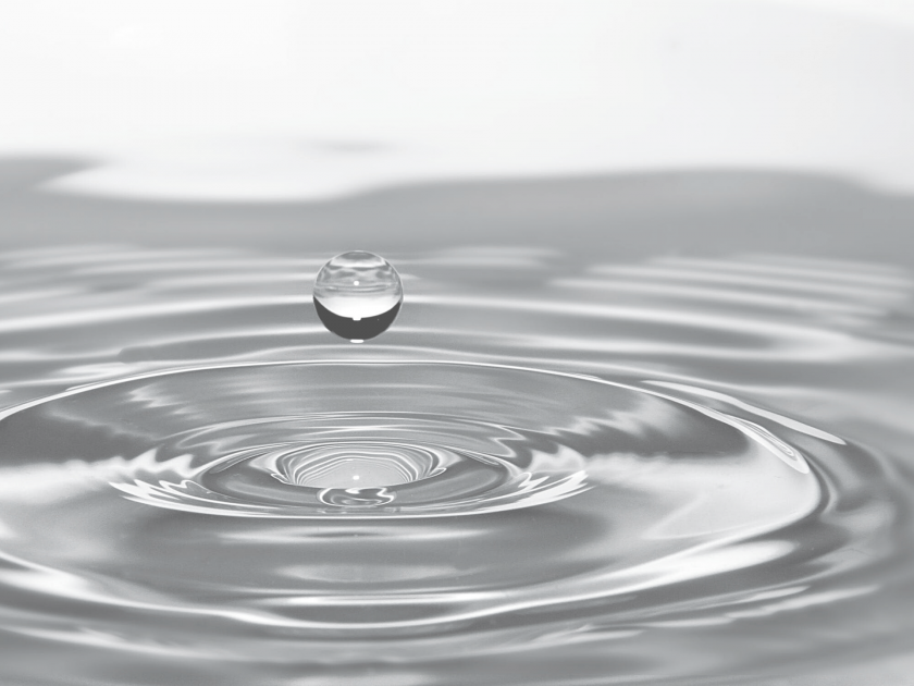 Water Licenses and Irregation